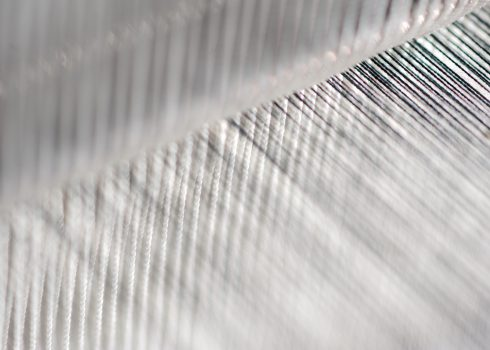 thread from weaving machine